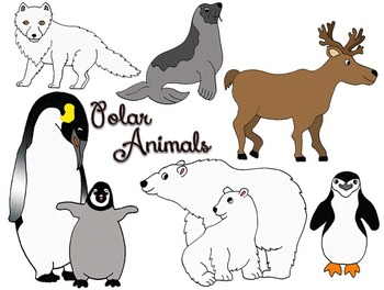 Clip Art~ Polar Arctic Antarctic Animals