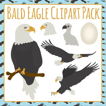 Bald Eagle Collection Clip Art Set for Commercial Use
