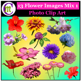 Clipart ♦ Flowers ♦ Flower Mix 1 Photo Clipart