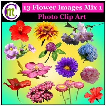 Clipart ♦ Flowers ♦ Flower Mix 1 Photo Clipart