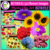 Clipart ♦ Flowers ♦ Flower Photo Clipart Bundle 1