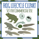 Frog Lifecycle Clip Art Pack for Commercial Use