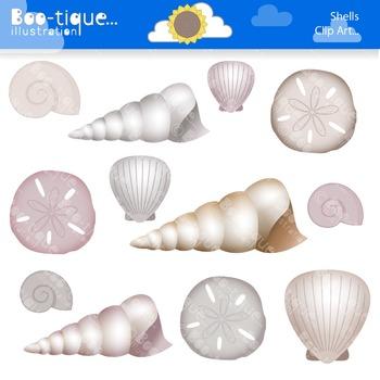 Clipart- Shells Clipart. Beach Clip Art. Shells DIgital Clip Art.