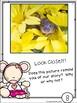 Close Read: Chrysanthemum