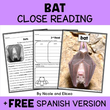 Close Reading Bat Activities
