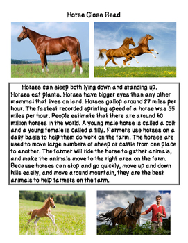 Close Reading ~ Horse: Expository Text