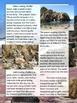 Close Reading: Pfeiffer Beach