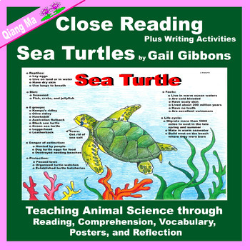 Close Reading: Sea Turtles