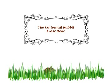 Close Reading ~ The Cottontail Rabbit (Easter Bunny)