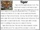 Close Reading Tiger
