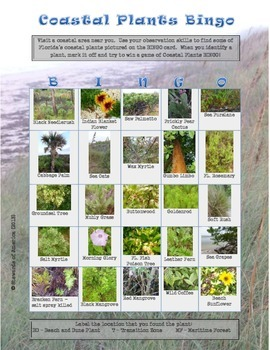 Coastal Plants Bingo and Coastal Uplands