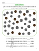 Coin Counting Collection
