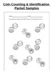 Coin ID and Counting Worksheets and Assessment (Pennies, N