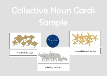 Collective Nouns Cards SAMPLE