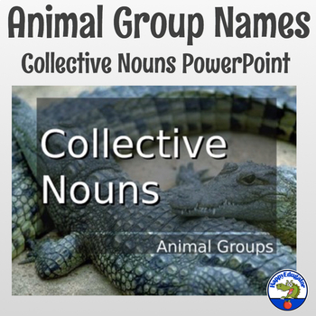 Collective Nouns of Animal Groups PowerPoint