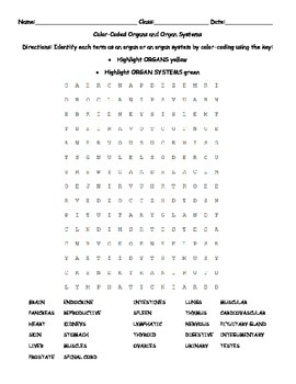 Color-Coded Word Search: Organ or Organ System?