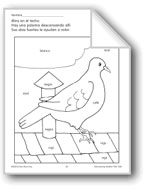 Color/Learn: Pigeon