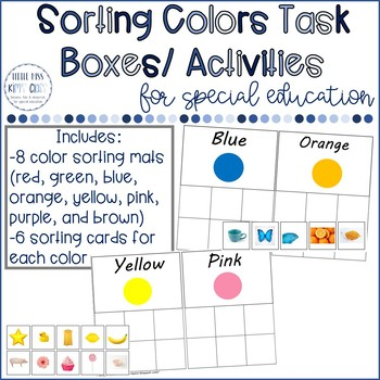 Color Sorting Task Box/ Independent Work Activity