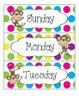 Colorful Polka Dot and Monkey Calendar Set