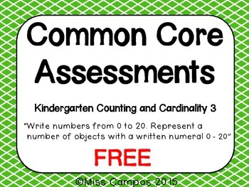Common Core Math Assessment
