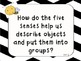 Common Core: Wonders Essential Questions