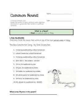 Common Noun Practice 2- Shel Silverstein
