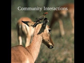 Community Interactions Cloze