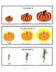 Comparative / Superlative Fall Edition