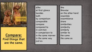 Compare / Contrast Visual