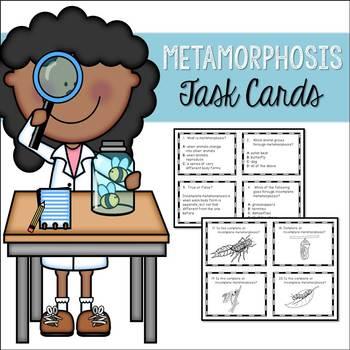 Complete and Incomplete Metamorphosis Task Cards