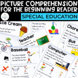 Comprehension for the Beginning Reader: PICTURE Comprehension