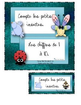 Compter les insectes (calculus number recognition)