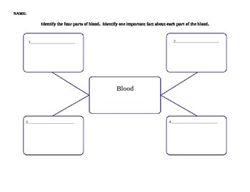 Concept Map - components of blood