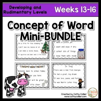 Concept of Word Intervention BUNDLE:  Week 13-16
