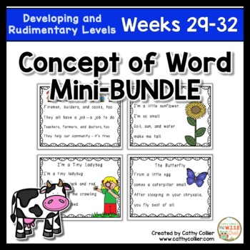 Concept of Word Intervention BUNDLE:  Week 29-32