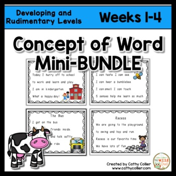 Concept of Word Intervention BUNDLE:  Weeks 1-4