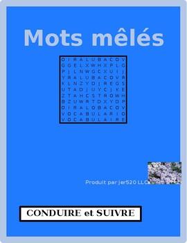 Conduire et Suivre French verbs wordsearch