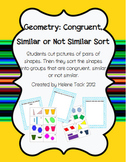Congruent Similar Shape Sort