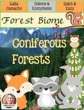 Forest Coniferous Forests