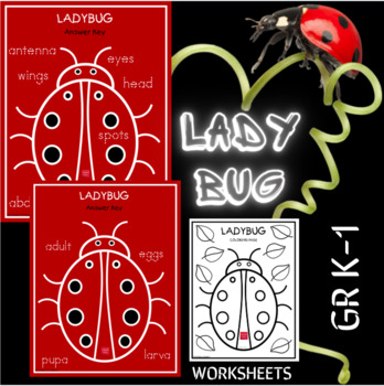 Connect the Dots - Lady Bug FREEBIE