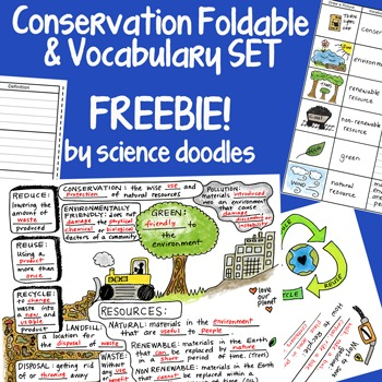 Conservation Interactive Notebook Foldable with Vocabulary