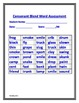 Consonant Blend Roll and Read