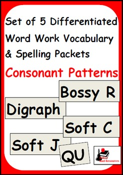 Consonant Patterns - Set of 5 Differentiated Word Work and