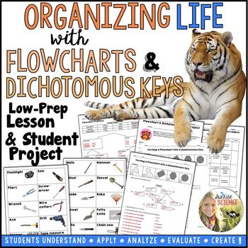 Constructing a Flowchart and Dichotomous Key Lesson and Project