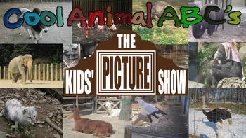 Cool Animal ABC's