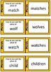 Cooperative Learning Multi-Structure Pack: Plurals