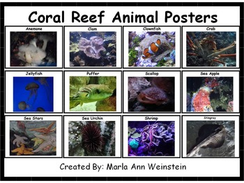 Coral Animal Posters