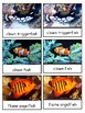 Coral Reef 3-part cards--Safari LTD Coral Reef Toob