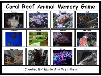 Coral Reef Animal Memory Game