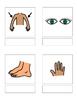 Core Vocabulary bundle of 10 categories. Matching book, fl
